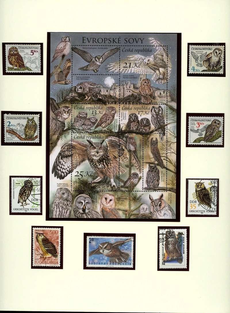 Vögel - Seite 2 Eulenb10