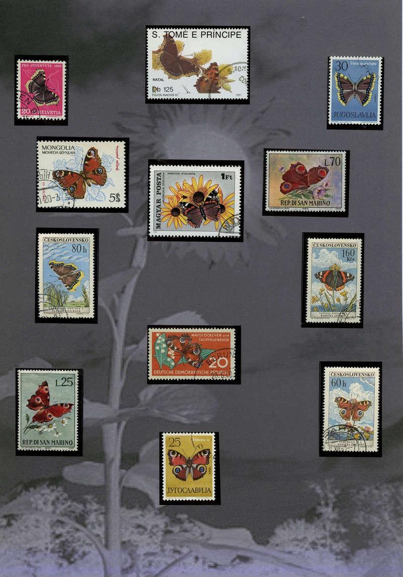 Schmetterlinge und Libellen - Kleine bunte fliegende Juwele Europa10