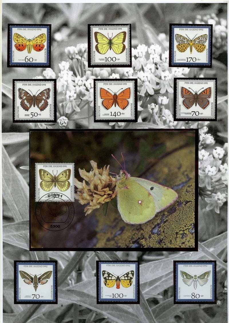 Schmetterlinge und Libellen - Kleine bunte fliegende Juwele Europa12