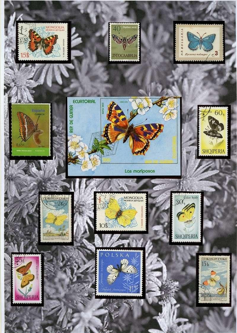 Schmetterlinge und Libellen - Kleine bunte fliegende Juwele Europa13