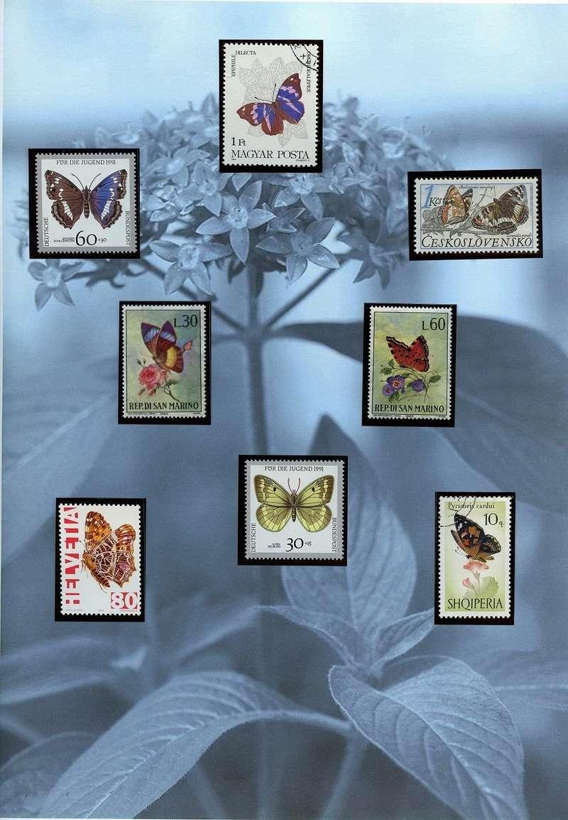 Schmetterlinge und Libellen - Kleine bunte fliegende Juwele Europa14