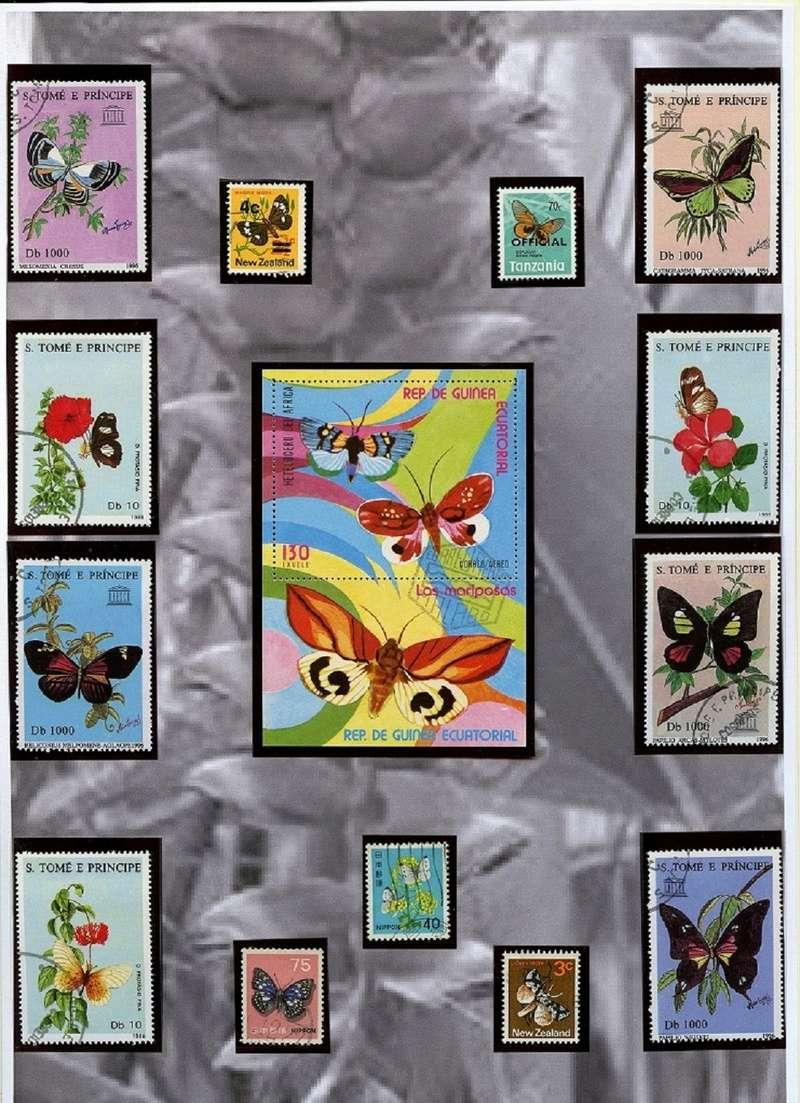Schmetterlinge und Libellen - Kleine bunte fliegende Juwele Img05010