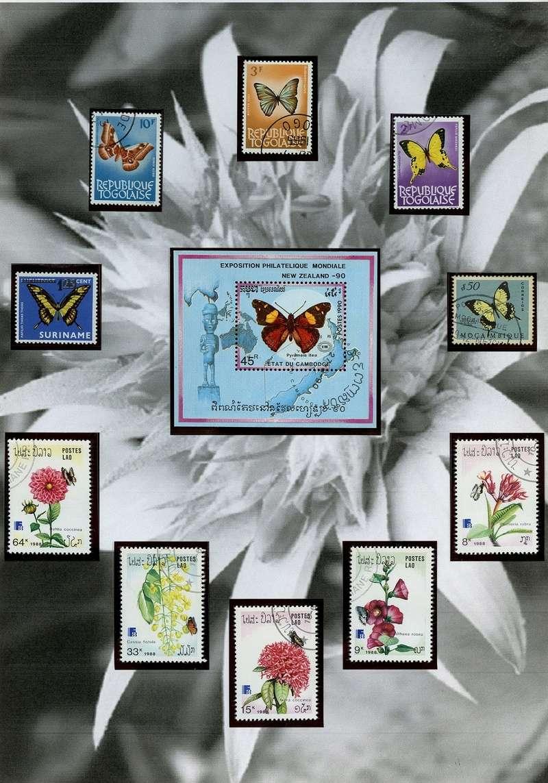 Schmetterlinge und Libellen - Kleine bunte fliegende Juwele Tropic10
