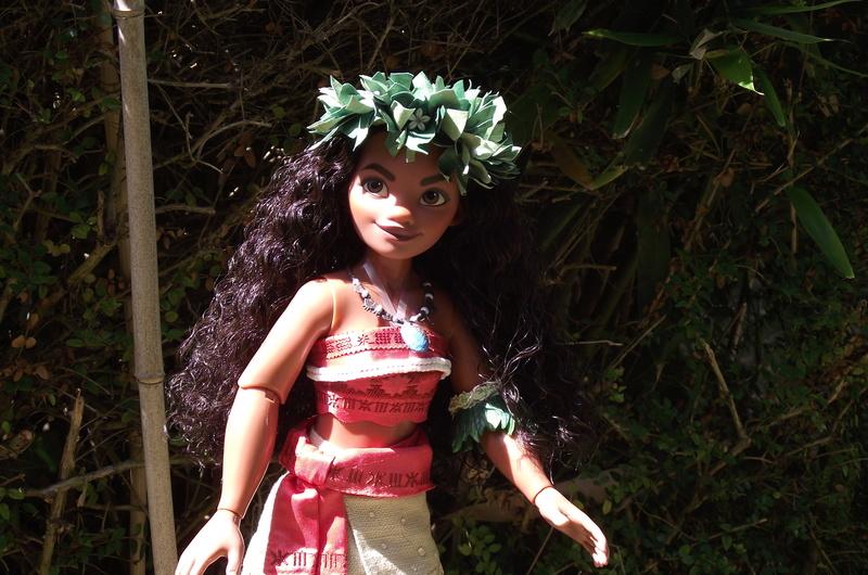 Nos poupées LE en photo : Pour le plaisir de partager - Page 40 Dscf8733