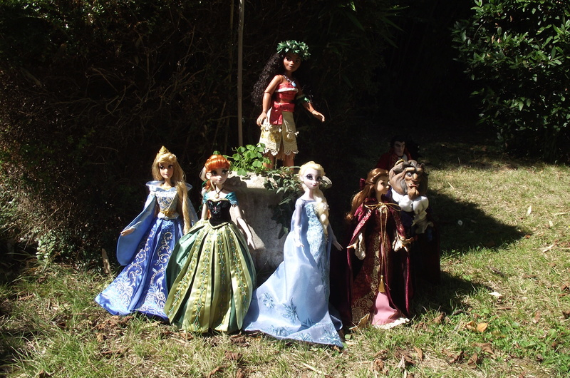 Nos poupées LE en photo : Pour le plaisir de partager - Page 40 Dscf8737