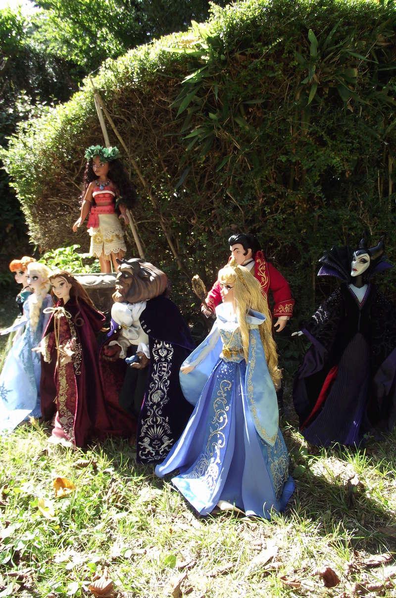 Nos poupées LE en photo : Pour le plaisir de partager - Page 40 Dscf8738