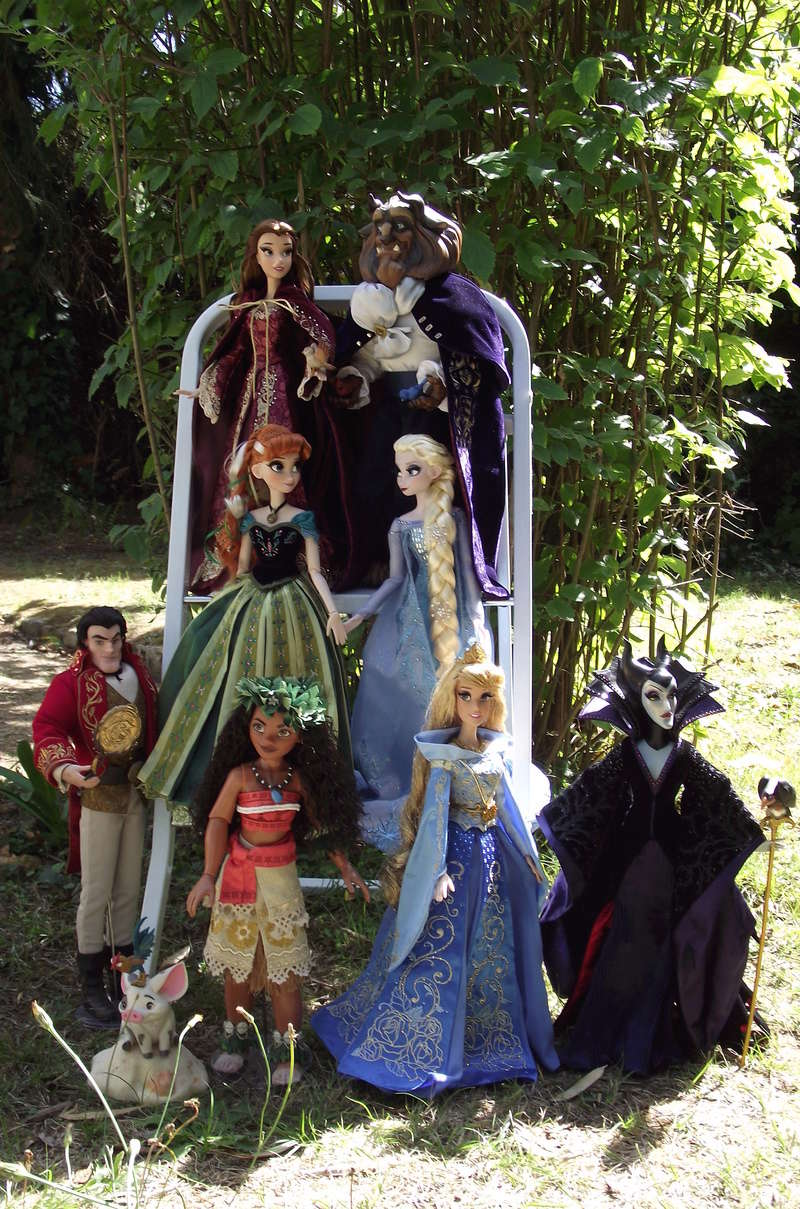 Nos poupées LE en photo : Pour le plaisir de partager - Page 40 Dscf8741