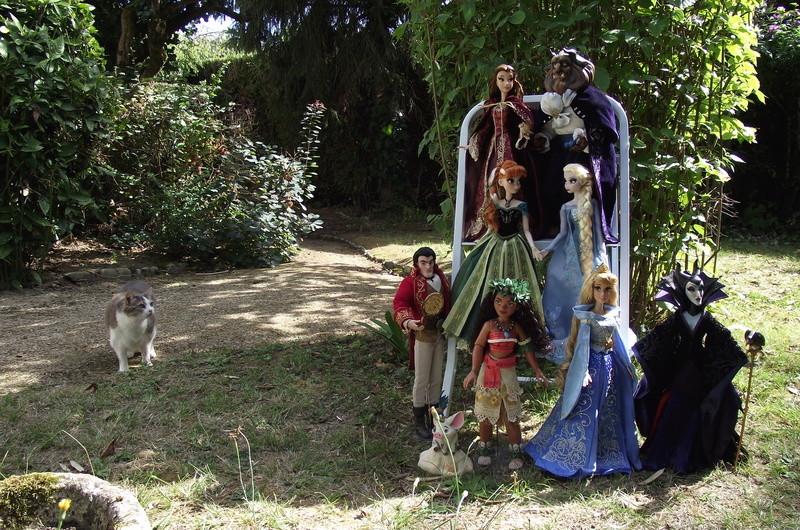 Nos poupées LE en photo : Pour le plaisir de partager - Page 40 Dscf8829