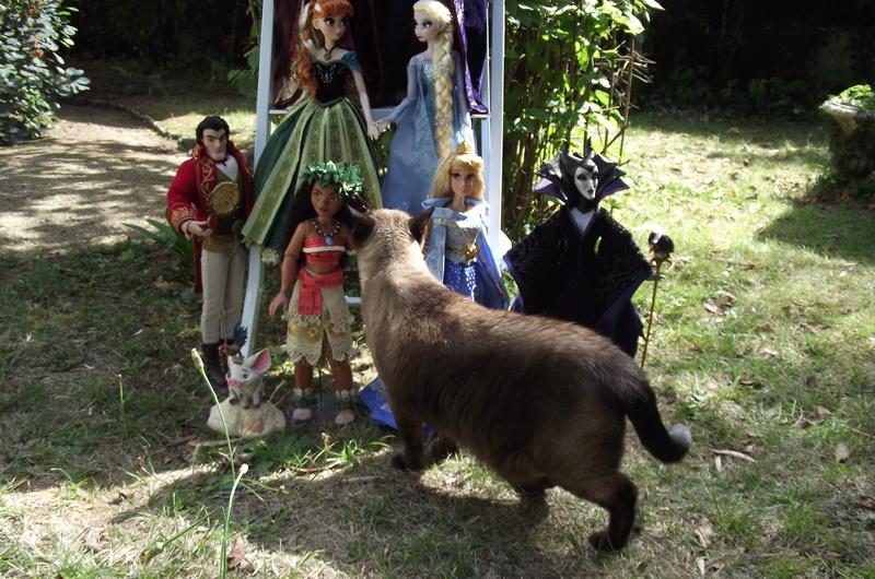 Nos poupées LE en photo : Pour le plaisir de partager - Page 40 Dscf8933