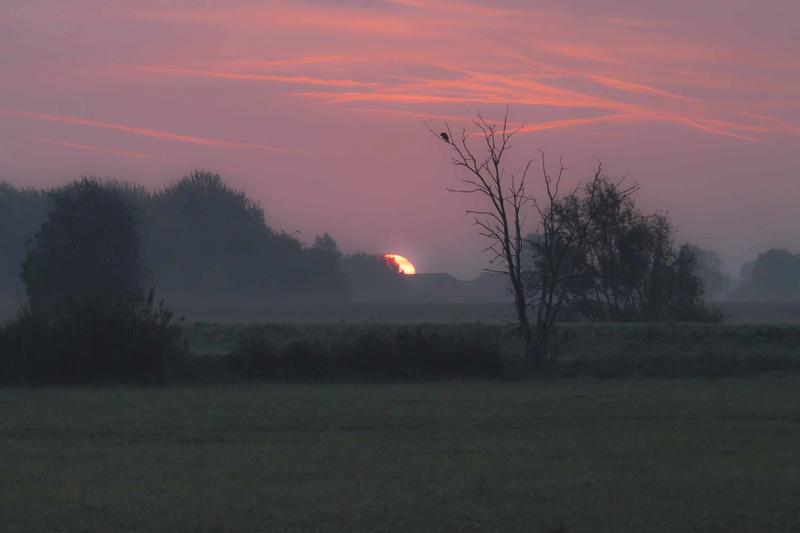 coucher de soleil la semaine dernière Couchy15