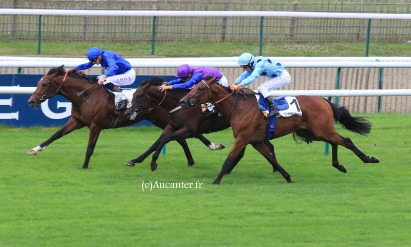 Photos Chantilly 3-09-2017 5j6a6214