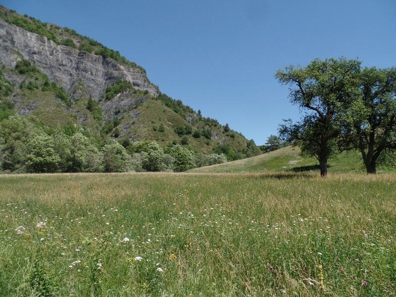 Vallée du Sasse - La Basse Combe (04) II Sasse_20