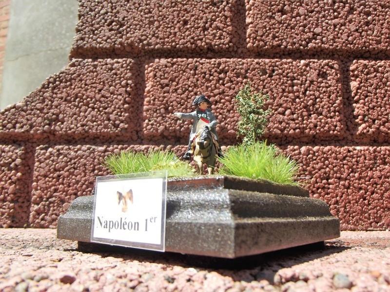 NAPOLEON 1/72 310