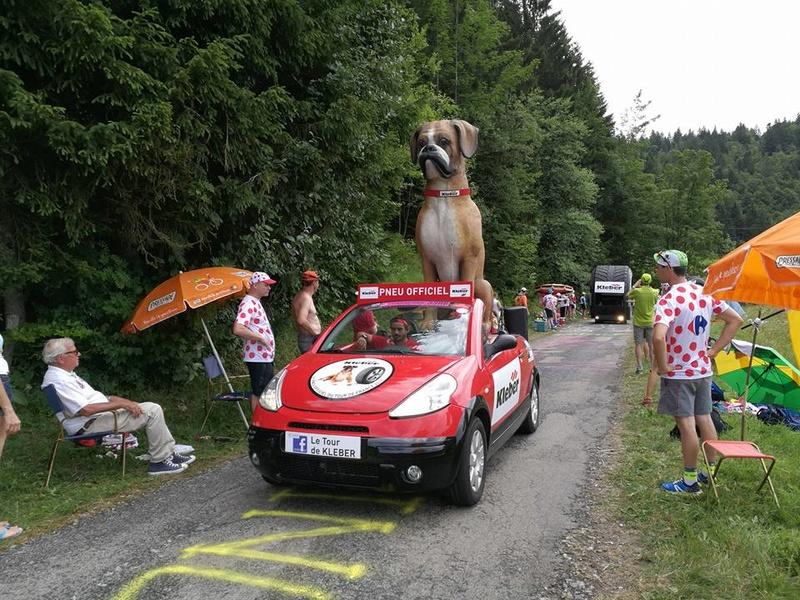 Tour de France 2017 19884010