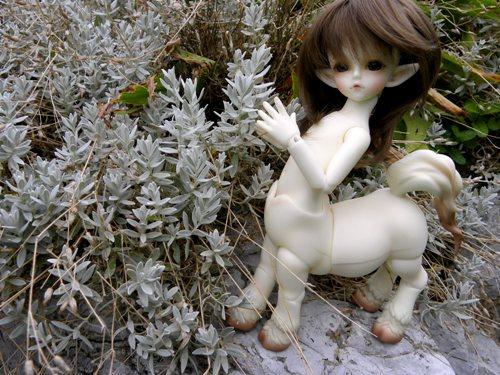 [small creatures] nouvelles custos pour le petit renard (p6) Img_0511