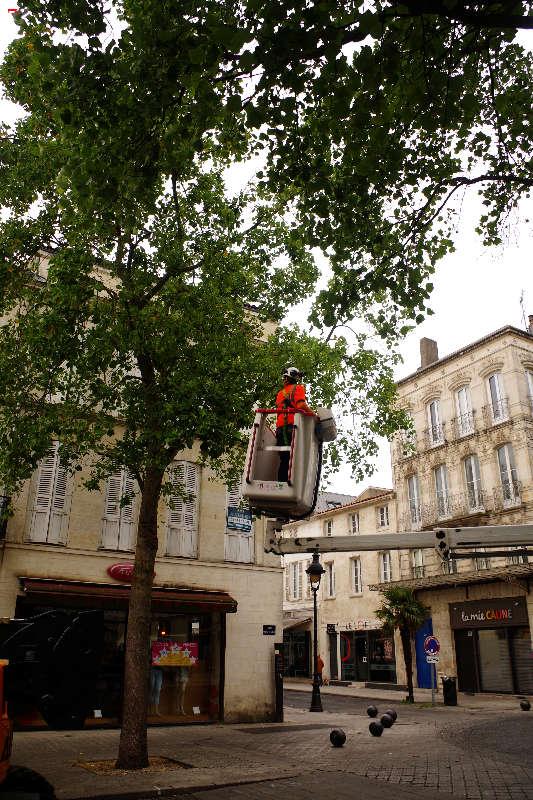 Les parapluies de Rochefort Imgp5812