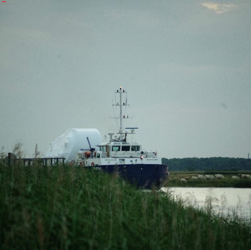 Belouga XL la traversée de Rochefort Imgp9610