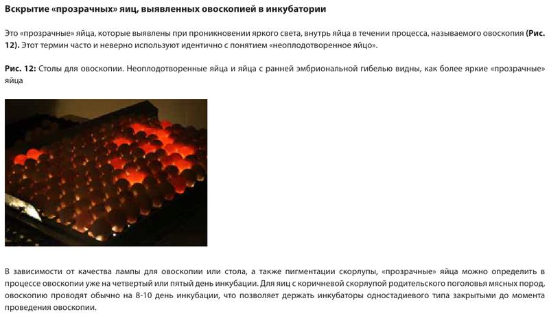 Анализ проблем выводимости яиц - Страница 5 Image180