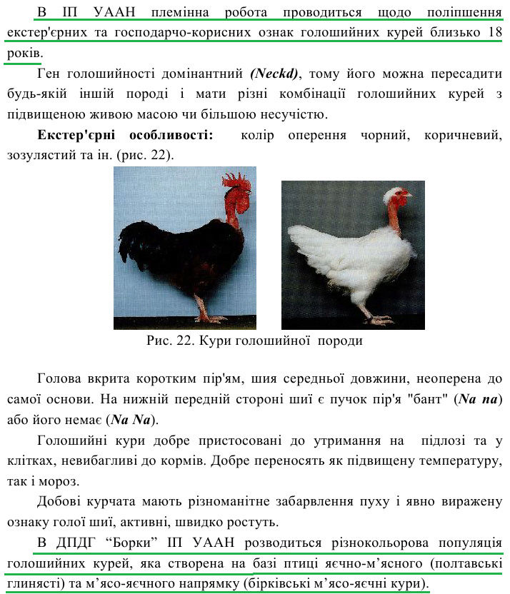 Голошейные куры - Страница 15 Image479