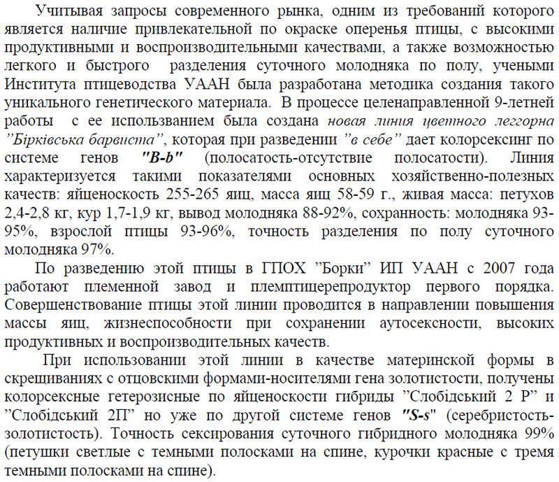 Борковская барвистая порода яичних кур - Страница 8 Image486