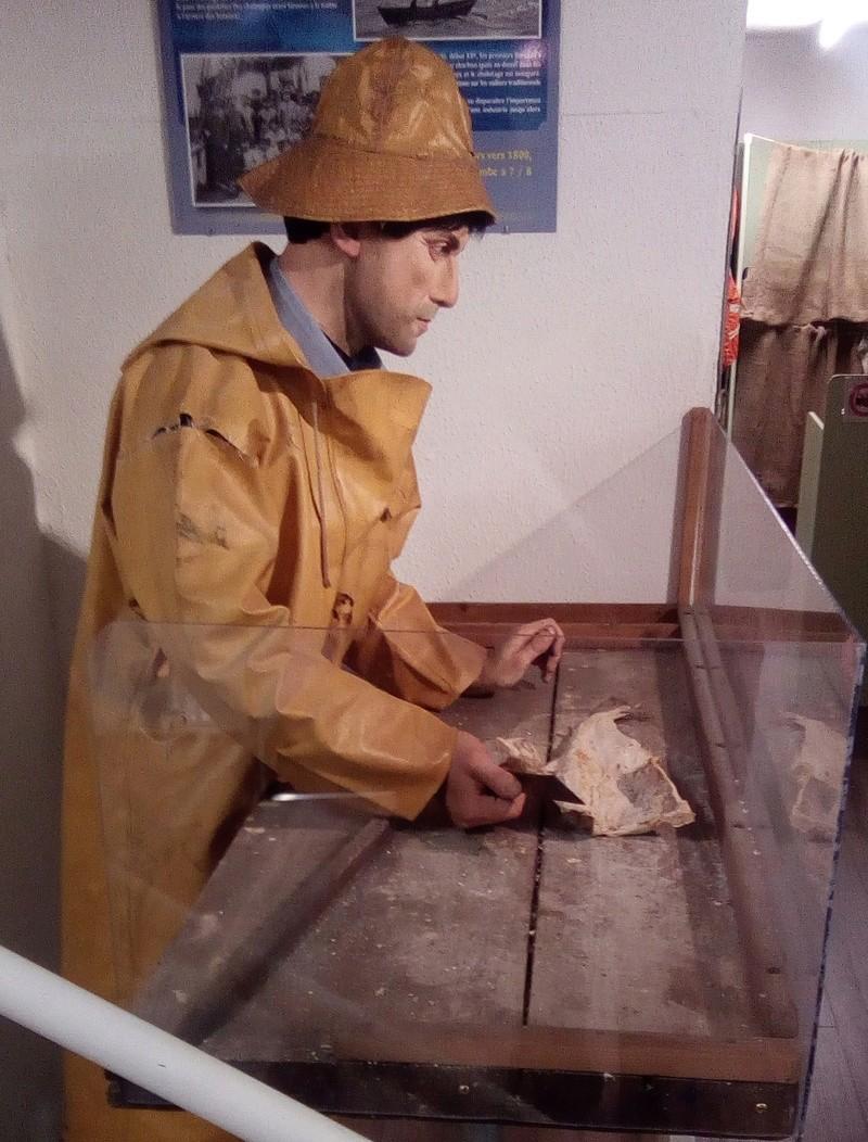 visite musée terre-neuvas à Saint-Malo Banc_d10