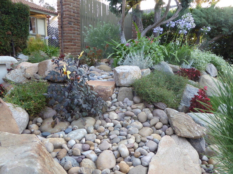 Jimmy's (home of Kohdi and Mishka) Gardening Projects - Page 7 02910