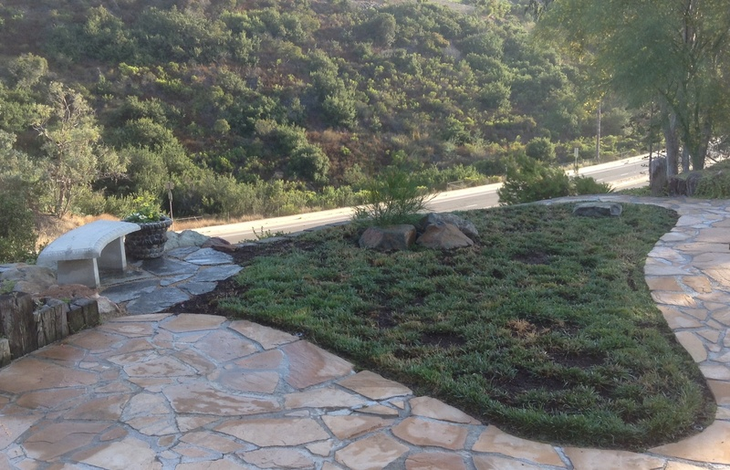 Jimmy's (home of Kohdi and Mishka) Gardening Projects - Page 7 Image40