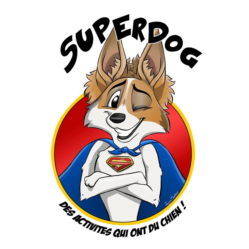 Superdog - Agility & Loisirs canins 15123310
