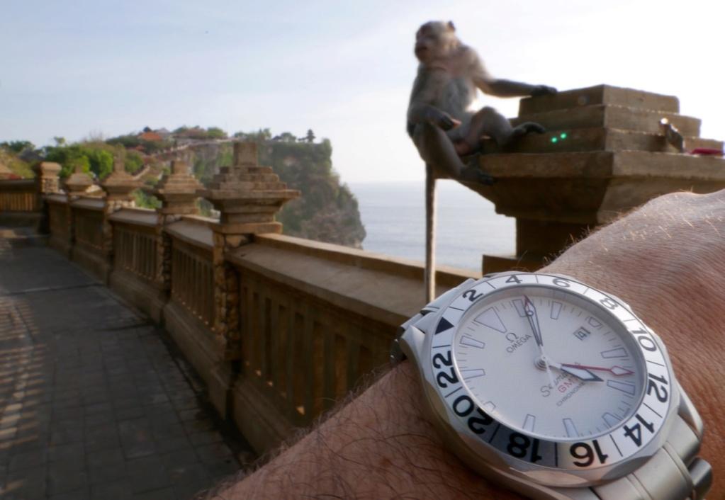 Wristshot de vos belles devant des monuments emblématiques - Page 39 P1030710