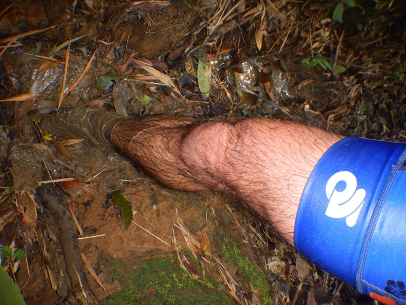 Raid au pays des moustiques ... Thumb_21