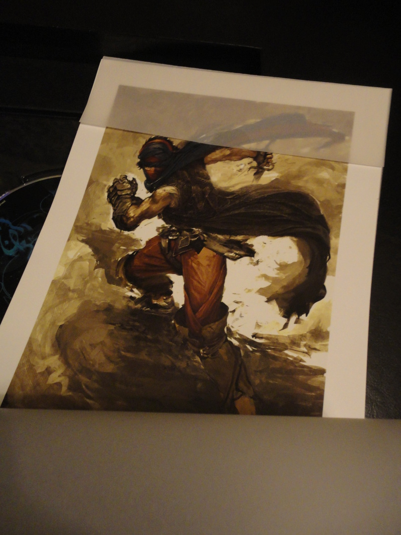 Prince of Persia collector 360 Dsc01616