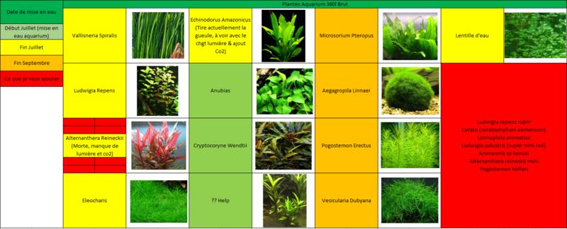 Bac Amazonien 360L Brut  Plante10