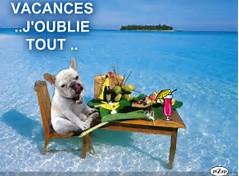 Cairns d'Août 2017 - Page 10 The7pn10