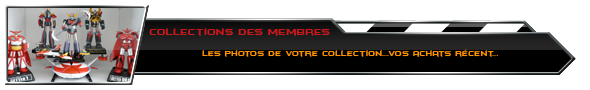 Collections des membres