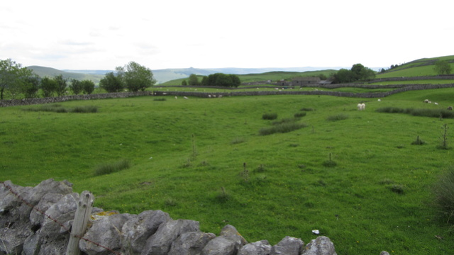 Ma Grande Bretagne : Somerset : suite et fin . Img_3325
