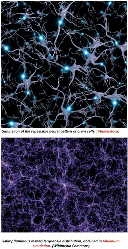 Πώς τα κύτταρα του εγκεφάλου είναι σαν μικρά σύμπαντα H65he510
