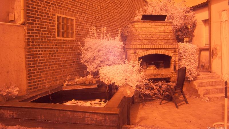 la nature en infrarouge Img_9213