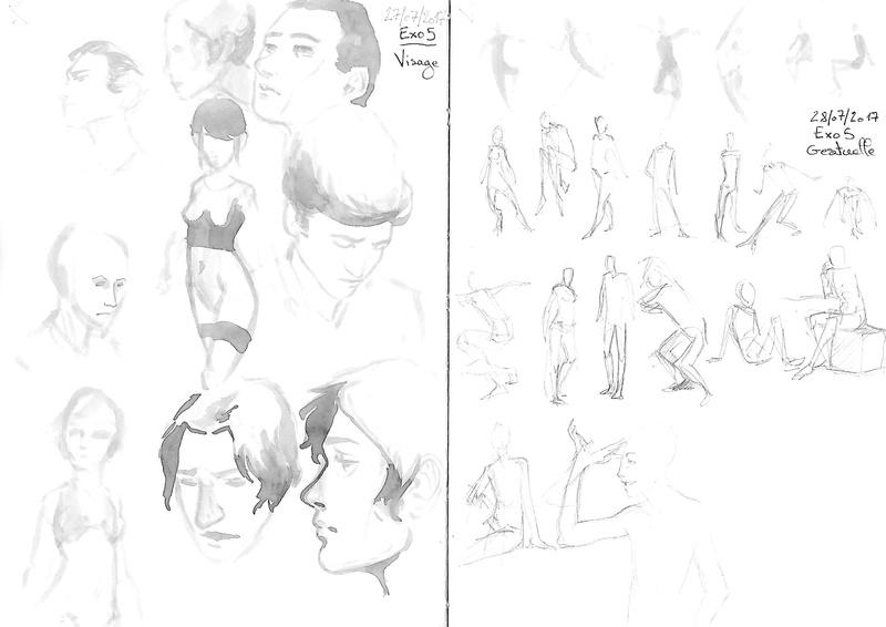 Les carnets d'Aline - Page 8 Etudes13