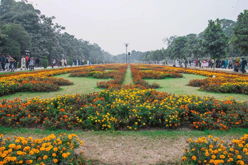 Parkovi i vrtovi - Page 6 23279110