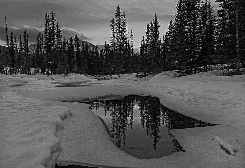 priroda u crno beloj boji - Page 4 32677110