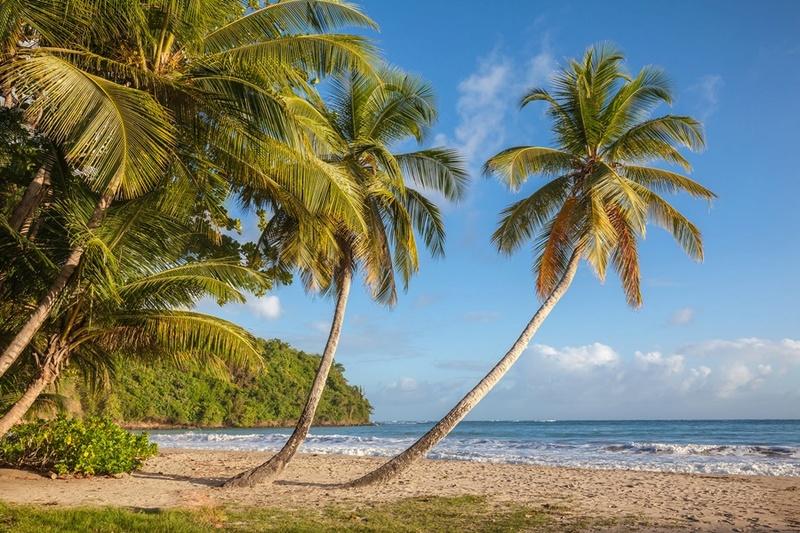More,jezero,reka...plaža,palma... - Page 32 33109610
