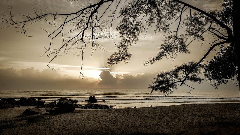priroda u crno beloj boji Beach-13