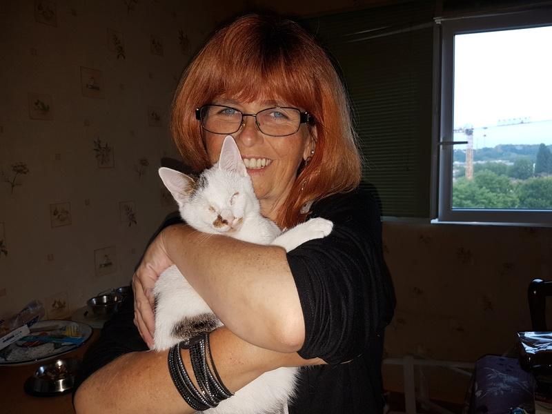 Mr SPOCK - chaton mâle, aveugle, né environ en mars 2017 - chez Lucian - Réservé FA par Abysse - Adopté par Valérie (92) 20170819