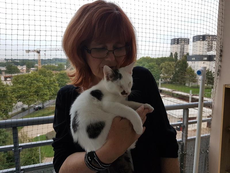 Mr SPOCK - chaton mâle, aveugle, né environ en mars 2017 - chez Lucian - Réservé FA par Abysse - Adopté par Valérie (92) 20170821