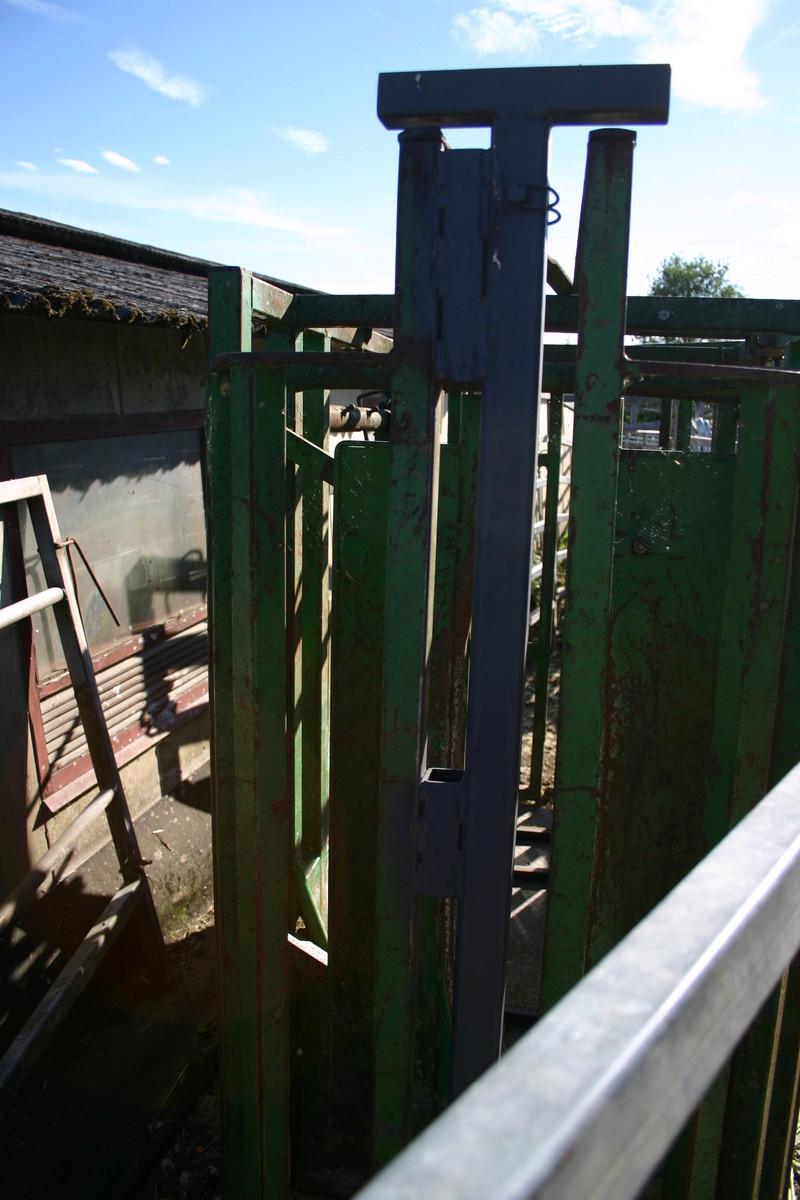 forum agri-occitanie, cage de contention bovin améliorée