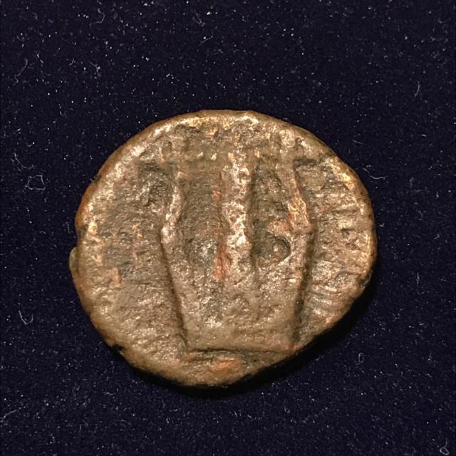 Identification grecque #2 Img_1810