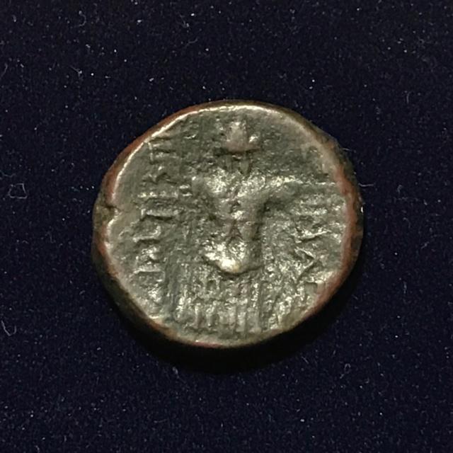Identification grecque #3 Img_1812