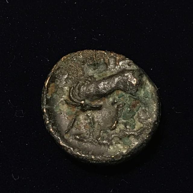 Identification grecque #4 Img_1814