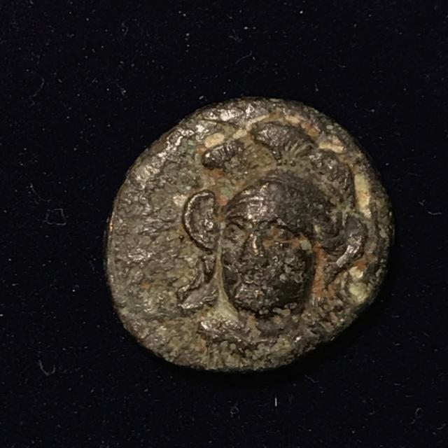 Identification grecque #4 Img_1815