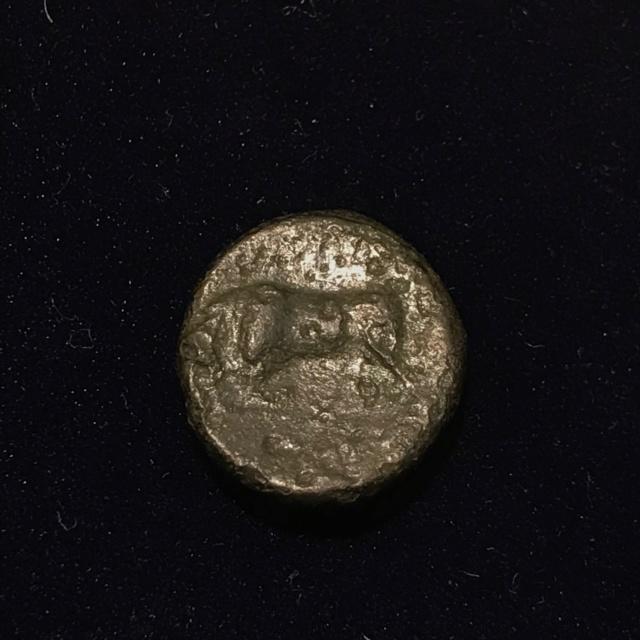 Identification grecque # 6 Img_1818
